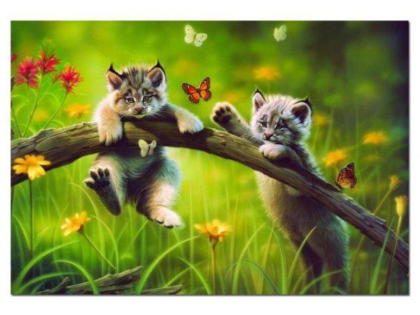 Educa Puzzle - Kočičky - 500 dílků